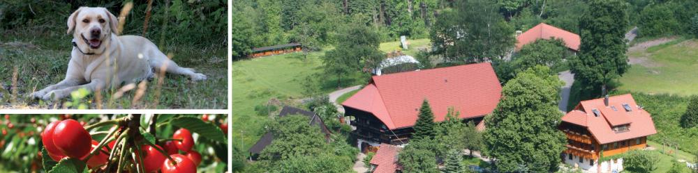 Ritterhof Durbach